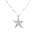 collar estrella mar plata